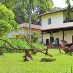 Hacienda Calibio Jardin
