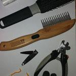 Erstausstattung: Bürste, Kamm mit unterschiedlicher Zahnlänge (für später habe ich ein Gummi in 8er-Schlingen um die Zähne gebunden - daran bleibt totes Haar beim Kämmen hängen - das aber erst später), Nagelknipser für die Krallen (ungefähr bis zur 12. We