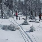 Langlaufkurse Bretterschachten, Bodenmais, Silberberg, Skischule, Langlaufkurse für Einsteiger und Fortgeschrittene, Langlaufschule in Bodenmais, Gruppenkurse, Einzelstunden, Wochenendekurse, Skating, Winter, Aktiv