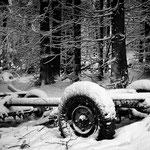 Fahrgestell alter Gummiwagen, Wald, Neuschnee