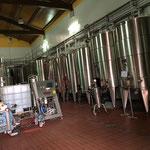 すべて温度管理されたステンレスの醸造タンク