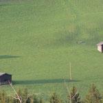 Pinzgau bei Mittersill