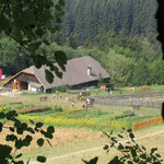 Hofstelle 2005