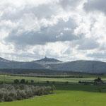 Hinten noch ein andalusisches Dorf . Auch hier beginnt alles zu blühen