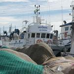 Die Boote im Hafen