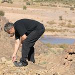 Alois sucht schon wieder Fossilien