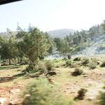 Die Marokkaner lieben das Piknicken in der freien Natur