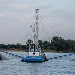 auf der Elbe Krabenfischer