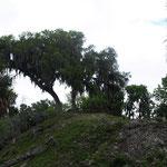 Großer Grabhügel mit Aussichtsplattform