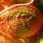 Eier mit Blättern und Blüten im Obstnetz