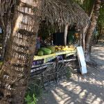 Tropische Früchte zu kaufen in Panama