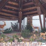 Waldtiere - Ausstellung in Mittelberg