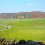 Tannwald