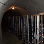 Weinkeller von Wieland Baumgartner