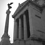 Vittoriano, Roma (una delle quattro colonne realizzate col marmo di Caldana)