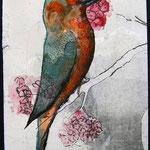 029 Sent to Kazunori Murakami - Japan - 21-05-2013