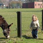 Haha, die Esel sind lustig :)