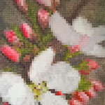 Flowers pixels - Acrylique sur toile (70x50cm)