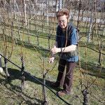 Anneliese Tangl (Weinhof Tangl) beim Rebschnitt