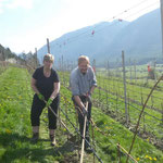Carmen und Andreas (Weinhof Flür) im Weingarten