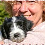 Schapendoeszüchterin Doris Schindler mit Schapendoeswelpe Viva