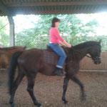 Heike traut sich Missi Trocken zu reiten
