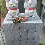 招き猫~今戸神社
