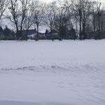 Que c'est beau la neige
