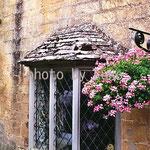 43:窓辺の花 @イギリス・コッツウォルズ地方