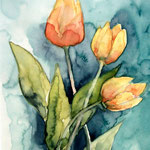 aquarell - tulpen