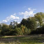 Natuurgebied Vallei van de Helderbeek Beringen Belgisch Limburg
