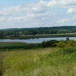 Salziger See in Sachsen-Anhalt 30.05.2014 (Foto: Hanne Uedelhoven)