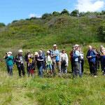 Gemeinsame Beobachtungen am Salziger See (30.05.2014) (Foto: Hanne Uedelhoven)