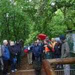 Führung der Gruppe auf dem Baumwipfelpfad (Foto: Hanne Uedelhoven)