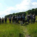 NABU-Schutzgebiet ehem. Truppenübungsplatz Rothenstein 31.05.2014  (Foto: Hanne Uedelhoven)