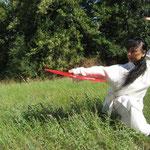 Maestra Xu Guanguan - ventaglio