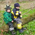 Im Wald finden wir nicht nur Bärlauch...
