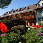 Eberhard Gartenbau AG  Kloten Bepflanzung Tulpen Kugeleiben