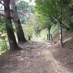 階段の途中の分岐。本丸へは右に曲がります。