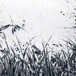 """""""L'herbe que le vent bouge"""""""