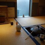 3日は実家の茶室でお抹茶を点てました!5月の鎌倉茶室集中山行のプランニングを始めました