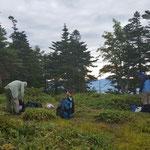池ノ平山山頂です テント数張り張れそうです!