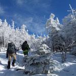 縞枯山への登り いい感じに雪がありました!