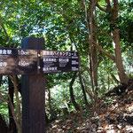浄智寺から長谷の大仏のハイキングルートを歩きます