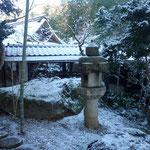 朝の庭 一面雪景色