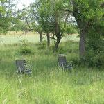 Gehört nicht in ein Naturschutzgebiet, lässt sich aber leicht wegräumen. Schmunzeln allerseits!