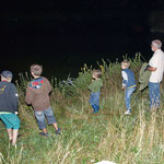 Über dem Fauerbachteich - das beste Jagdrevier für Fledermäuse