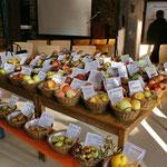 Nicht alltäglich: Die Obstsortenausstellung kann gegen Ende der Veranstaltung aufgegessen werden