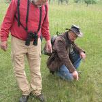 Maximilian Burk (li.) und Michael Schwarz (re.) untersuchen den Trockenmagerrasen