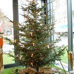 Weihnachtsbaum mit Krippe. Foto: VR-Stiftung